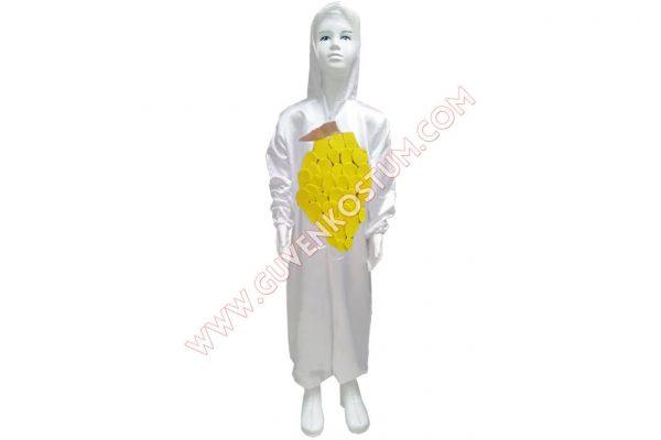 Ananas Kostümü