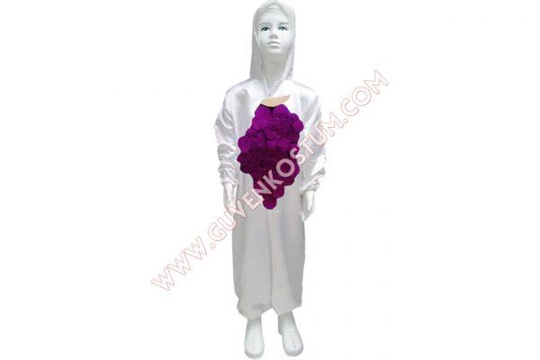 Üzüm Kostümü